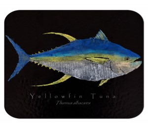 Yellowfin Tuna on black board